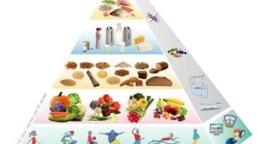 potrzeby żywieniowe
