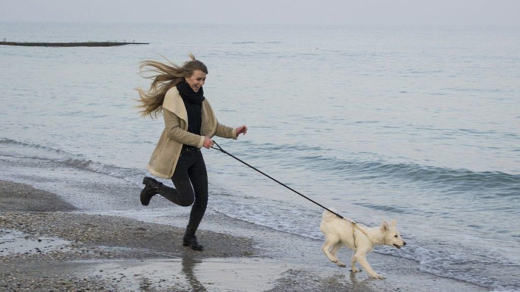 bieganie z psem