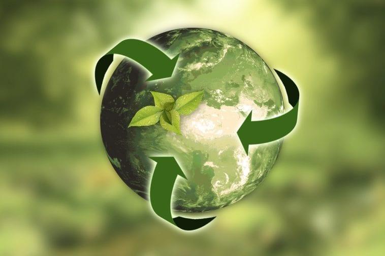 Ekologiczne rozwiązania w domu