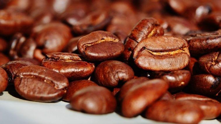 najdroższe kawy